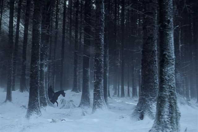 Haunted Forest Game of Thrones Scene HBO