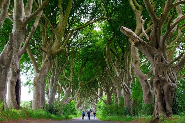 Irlanda Norte Juego de Tronos Game of Thrones Darg Hedges