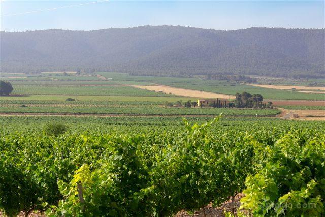Comunidad Valenciana Toscana Campo Vides Casa