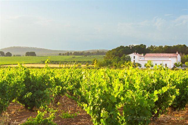 Comunidad Valenciana Toscana Campo Vides Masia