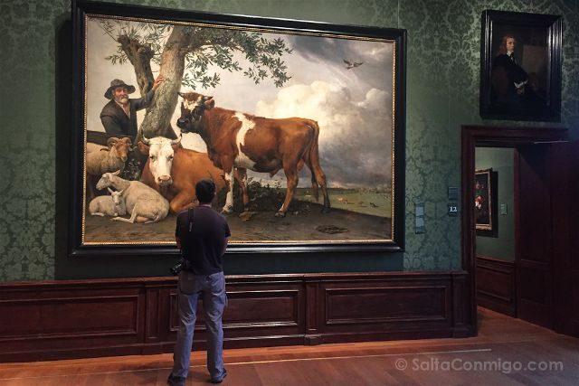 paises bajos holanda la haya maurithuis el toro paulus potter
