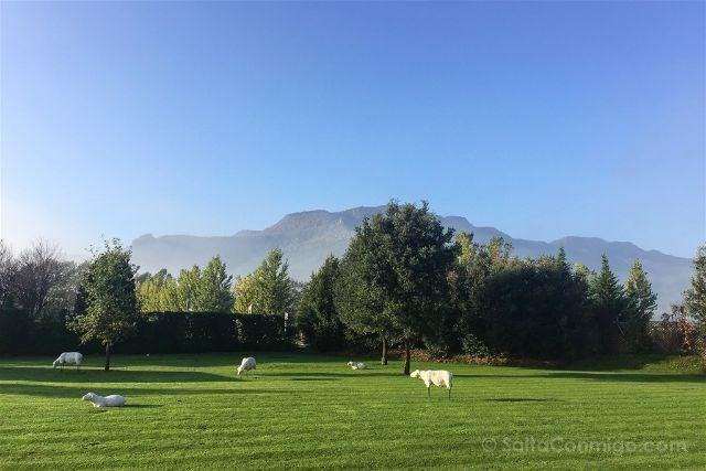 girona garrotxa parque natural zona volcanica hotel vall bas puigsacalm