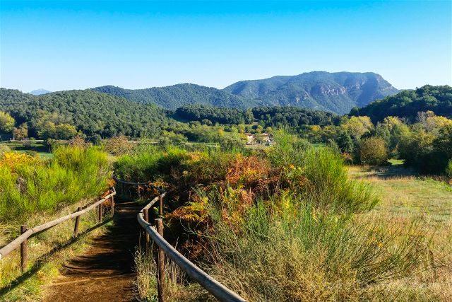 girona garrotxa parque natural zona volcanica sendero
