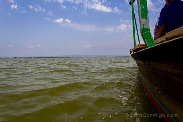 valencia albufera el palmar barca paseo
