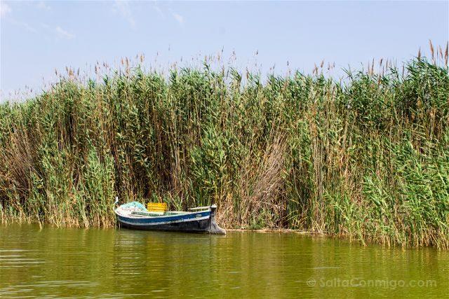 valencia albufera el palmar barca
