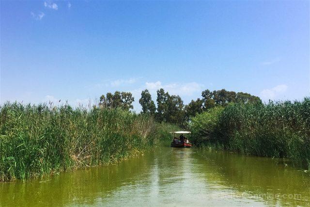valencia albufera el palmar paseo barca