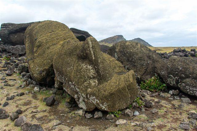 Chile Isla De Pascua Moai Caido