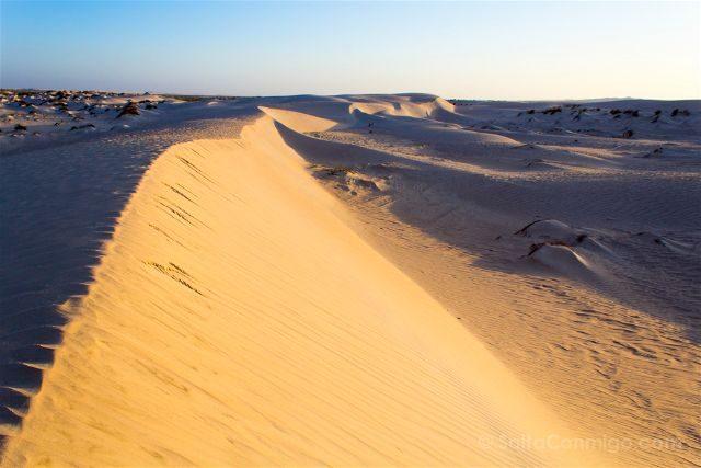 Oman Desierto Sugar Desert Al-Khaloof Dunas