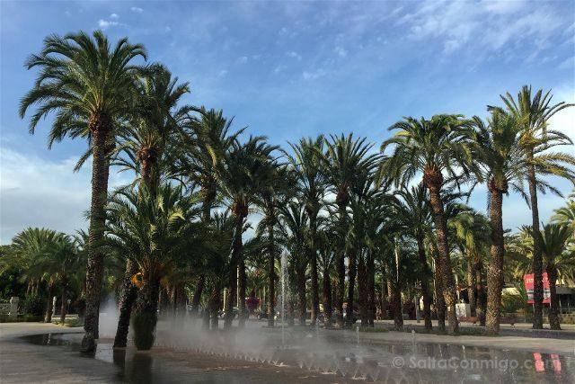 Alicante Elche Palmeral Parque Municipal Fuente
