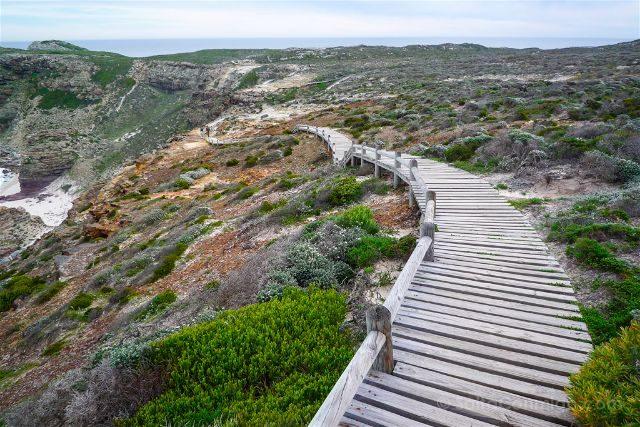 Sudafrica Peninsula del Cabo Camino Cape Point Buena Esperanza