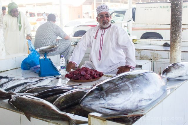 Oman Barka Mercado Pescado Vendedor