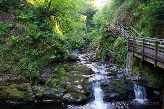 Irlanda Del Norte Glenariff Forest Park