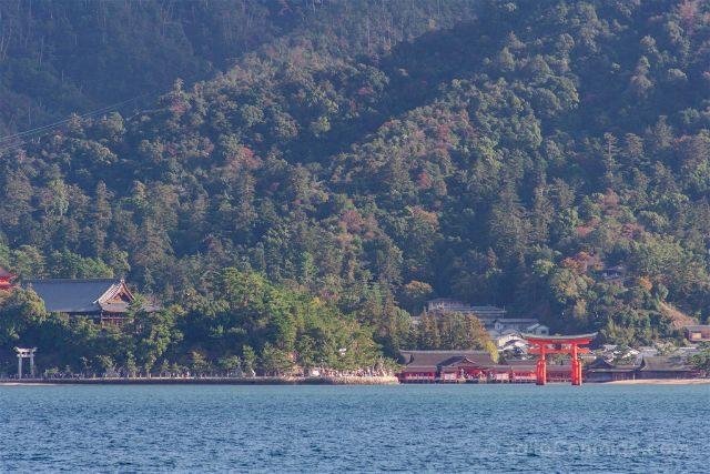 Japon Miyajima Itsukushima Torii Completa