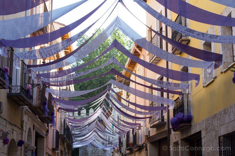 Brihuega Guadalaja Festival de Lavanda Calles