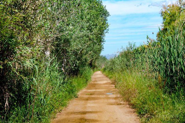 Catalunya Barcelona Delta Llobregat Sendero Fuera Reserva