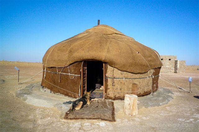 Uzbekistan Kyzyl Kum Desierto Yurta Perro