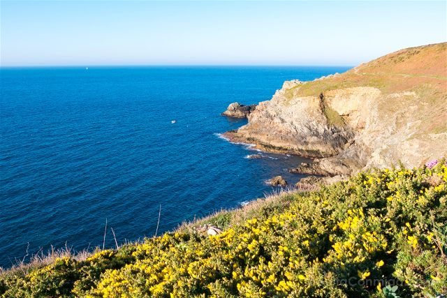 Francia Bretagne Pointe Du Raz Vegetacion Oceano