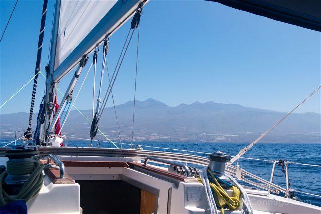 Islas Canarias Tenerife Avistamiento Cetaceos BigSmile Costa