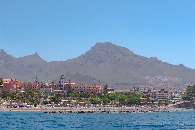 Islas Canarias Tenerife Avistamiento Cetaceos Costa Sur