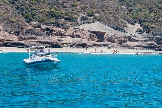 Islas Canarias Tenerife Avistamiento Cetaceos Playa