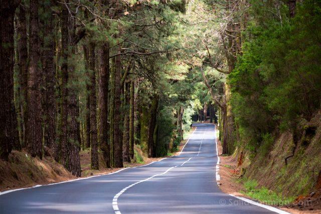 Islas Canarias Tenerife Carretera La Esperanza Miradores
