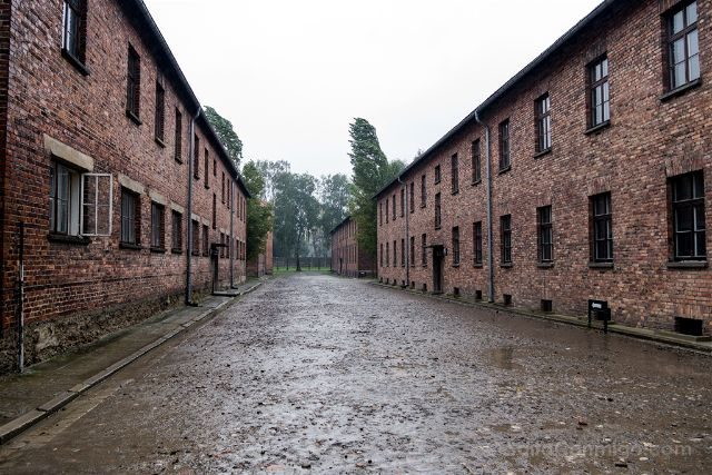Polonia Cracovia Auschwitz Calle