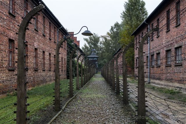 Polonia Cracovia Auschwitz Alambre Espino