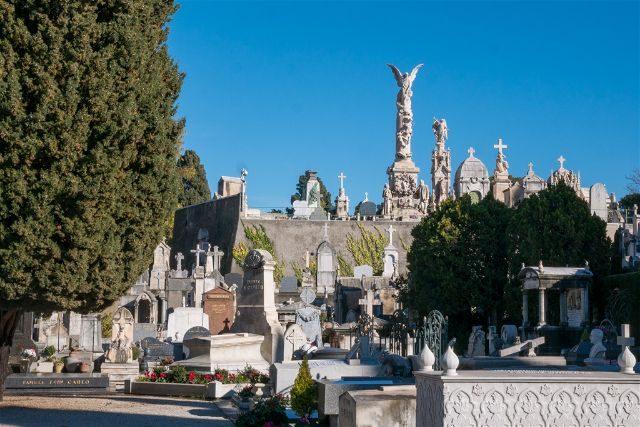 Francia Niza Cementerio Castillo