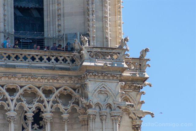 Francia Paris Notre-Dame Gargolas Quimeras