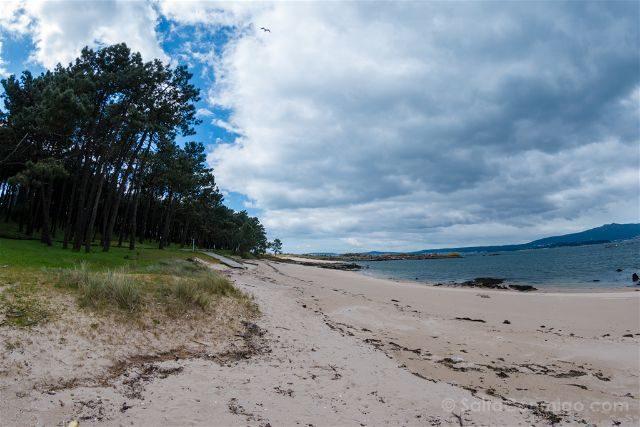 Galicia Pontevedra Rias Baixas Illa Arousa Playa La Secada