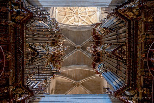 Galicia Rias Baixas Catedral de Tui Interior Organos Vertical