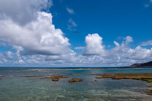 La Playa De Las Canteras En Las Palmas De Gran Canaria Snorkel Surf Restaurantes Hoteles