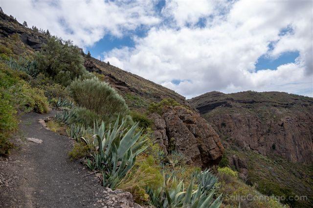 Las Palmas de Gran Canaria Caldera Bandama Sendero