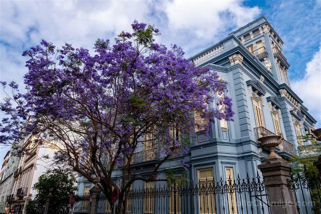 Las Palmas de Gran Canaria Triana Casa