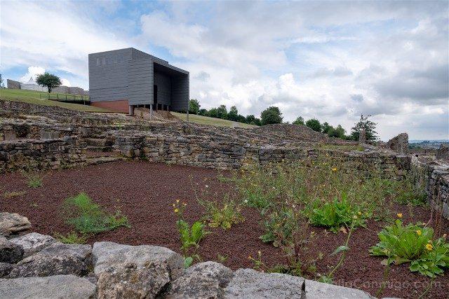 Asturias Gijon Villa Romana Veranes Ruinas Flora