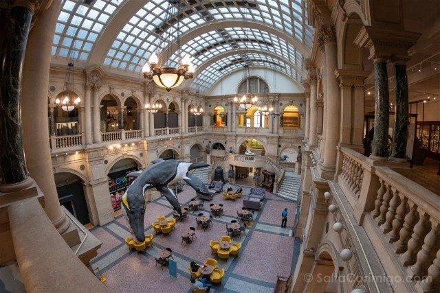 Que ver en Bristol Museum Art Gallery Hall Ojo Pez