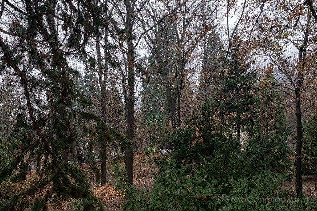 Que ver en Sofia Iglesia Boyana Parque