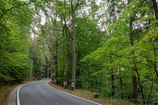 Excursiones desde Wroclaw Baja Silesia Bosques