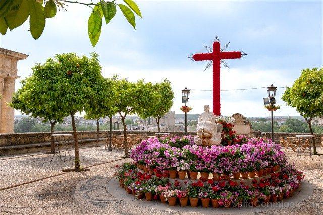 Cruces de Mayo en Cordoba Hermandad Santo Sepulcro