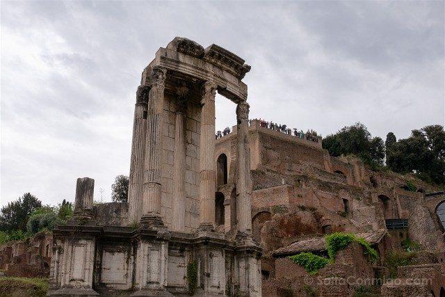 Roma Tour Coliseo Foro Palatino Civitatis Vista Mirador Palatino