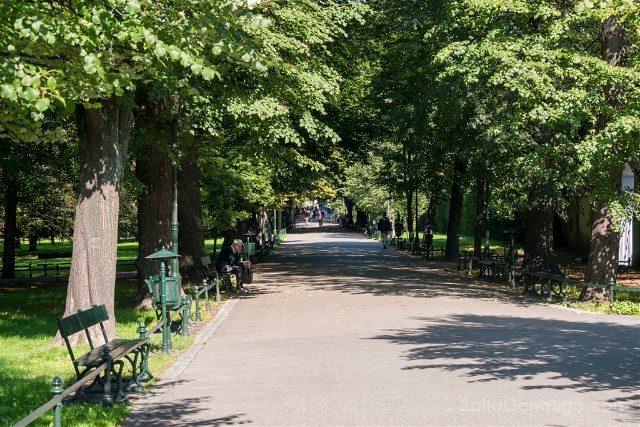 Que Hacer en el Centro de Cracovia Parque Planty