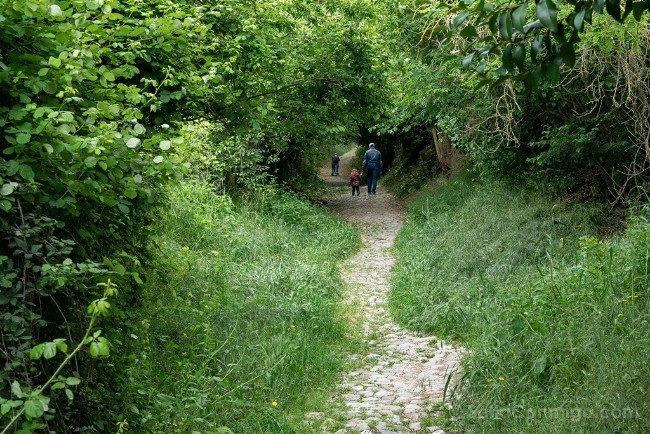 Ruta por la Toscana Certaldo Camino Medieval