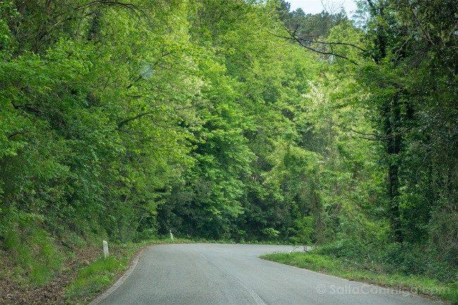 Ruta por la Toscana Coche Carretera Secundaria
