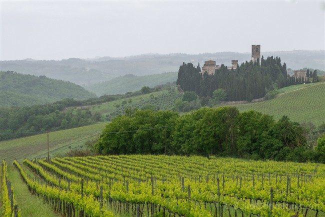 Ruta por la Toscana Paisaje Chianti Abadia Passignano