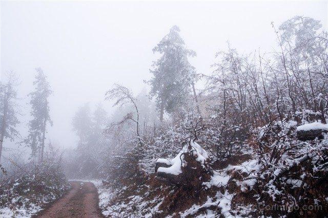 Fortaleza de Belogradchik Bulgaria Sendero Nieve