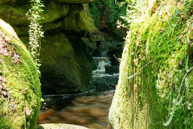 Bosque de Huelgoat Salto Agua Rocas