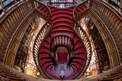 Libreria Lello Oporto Sara Escalera Ojo Pez