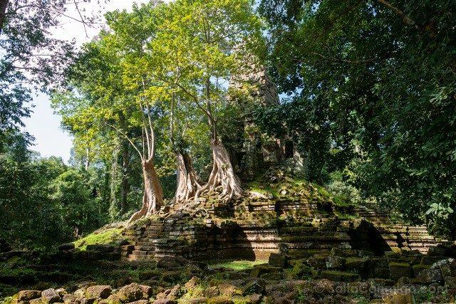 Templos de Angkor Prasat Preah Palilay
