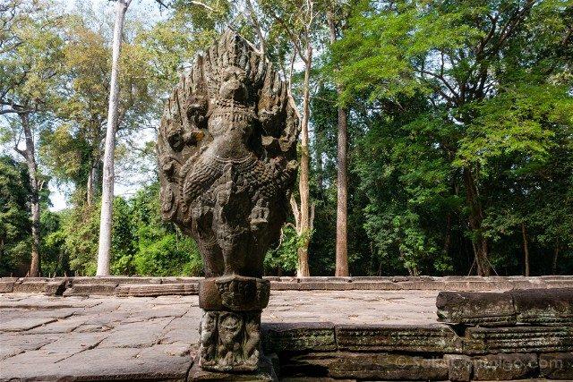 Templos de Angkor Preah Khan Garuda Naga