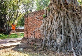 Que Ver en Ayutthaya Wat Mahathat Salto